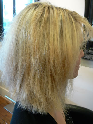 Hair Gallery - examples from the Firefly Hair Company, beautiful ...